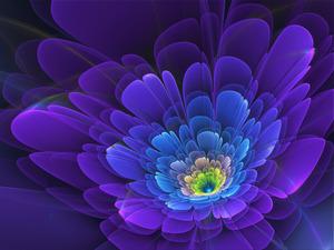 Обои Фиолетовый цветок