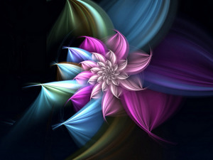 Обои Цветок