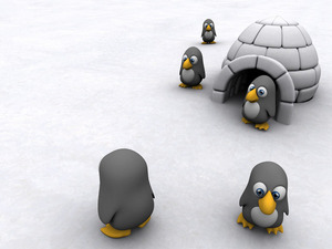 Обои Пингвиний лагерь