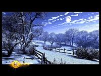 Обои для рабочего стола: Зимняя ночь