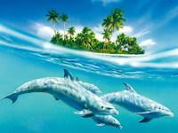 Обои для рабочего стола: Дельфины и остров