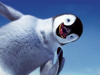 Обои улыбка, делай ноги, пингвин, небо на рабочий стол 18520.