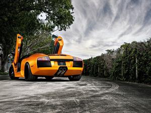 Обои Lamborghini