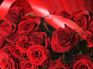 Обои Букет красных роз