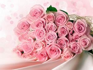 Обои Букет роз