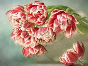 Обои 1541 из раздела Цветы