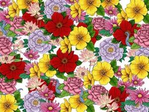 Обои 436 из раздела Цветы