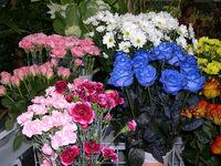 Обои для рабочего стола: Цветочный магазин