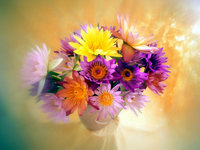 Обои для рабочего стола: Букет цветов