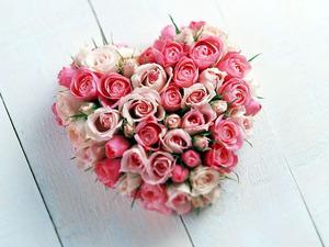 Обои Розовое сердце