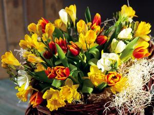 Обои Букет весенних цветов