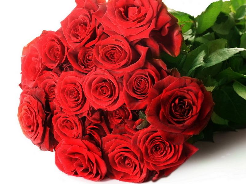 http://img.desktopwallpapers.ru/flowers/pics/90c297e3217ac81fc0995.jpg