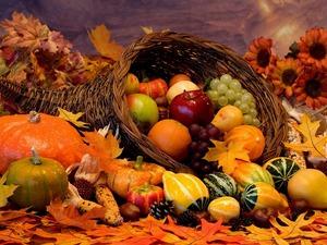 Обои Овощи и фрукты