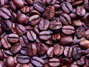 Обои Кофейные зерна