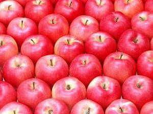 Обои Яблоки