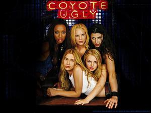 ���� ��� «������ �����» (Coyote Ugly)