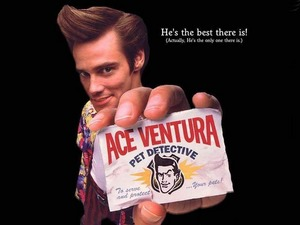 ���� ��� ������� (Ace Ventura)