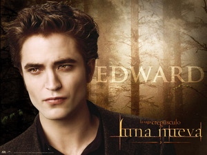 Обои Сумерки. Сага. Новолуние (The Twilight Saga: New Moon)