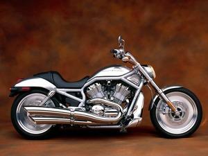 ���� Harley Davidson V-Rod