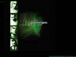 Обои Guano Apes