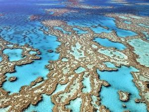 Обои Великий Барьерный риф