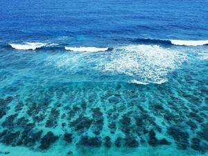 Обои Прозрачное море