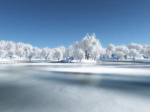 Обои Зимняя тишина