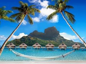 Обои Райское наслаждение