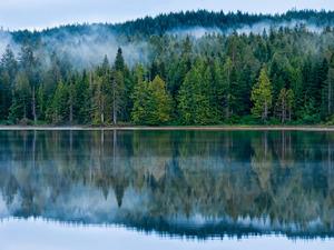 Обои Утро на озере