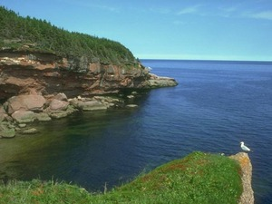 Обои Северное море