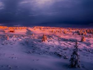 Обои Зимний закат
