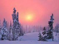 Обои для рабочего стола: Зимний рассвет