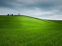 Обои для рабочего стола: Зелёные холмы