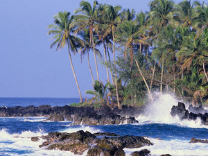Обои Тропический берег