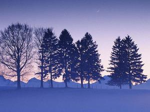 Обои Зимний вечер