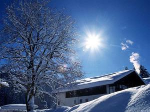 Обои Зимнее солнце