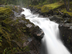 Обои Лесной водопад