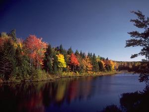 Обои Осенняя зарисовка