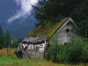 Обои Старый охотничий домик