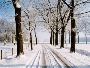 Обои Зимняя дорога