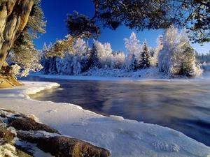 Обои Зимняя река