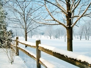 Обои Зимняя околица