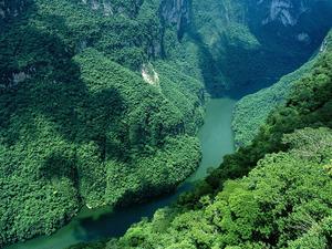 Обои Зелёное ущелье