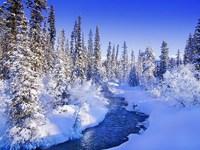 Обои для рабочего стола: Зимняя река