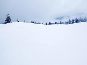 Обои Снежный горизонт