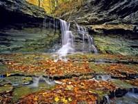 Обои для рабочего стола: Водопад осенью