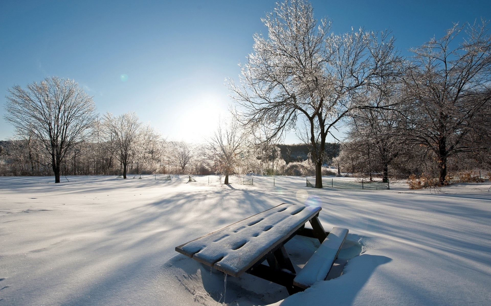 Солнечная Зима Обои Для Рабочего Стола
