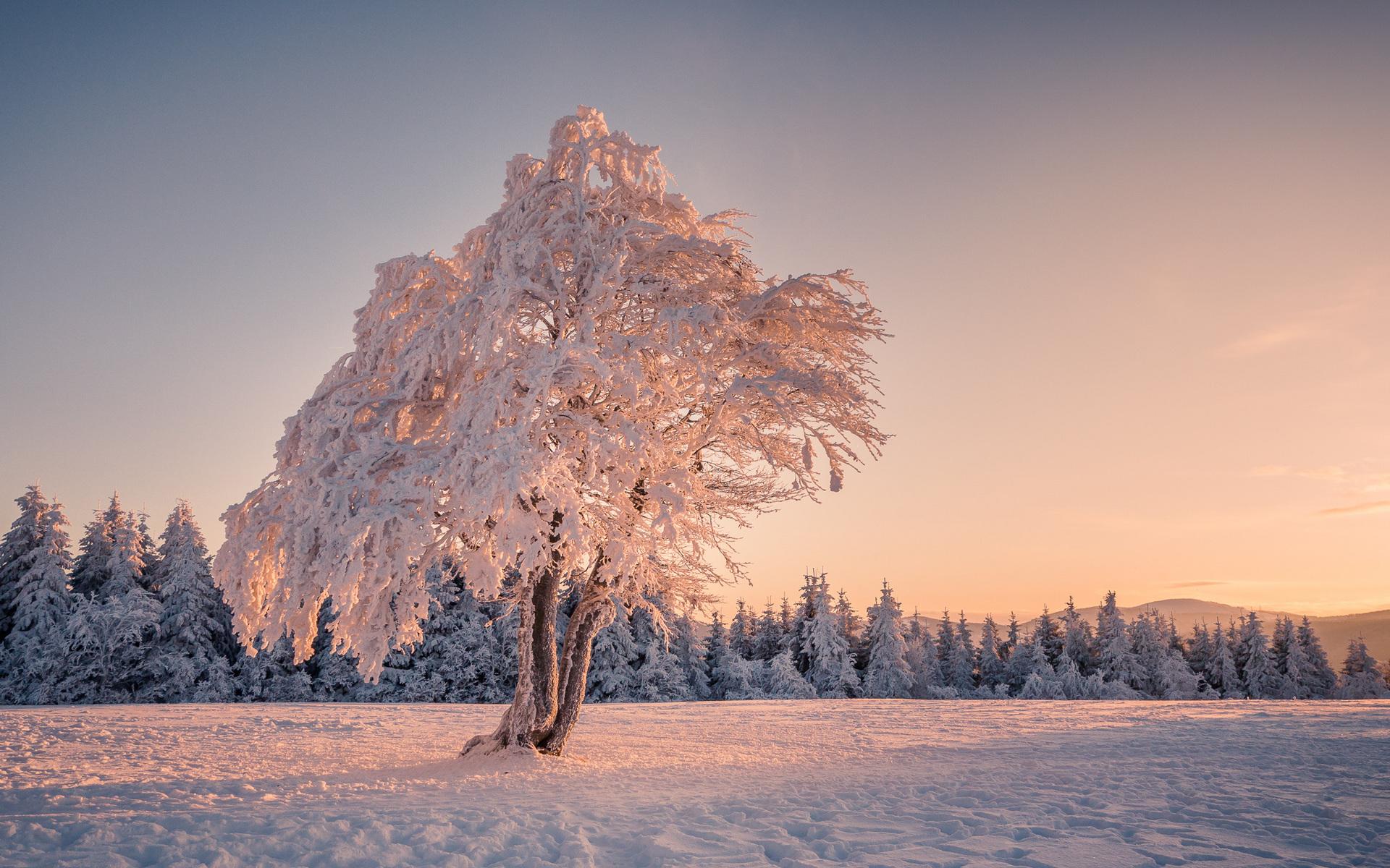 фото зимнее небо