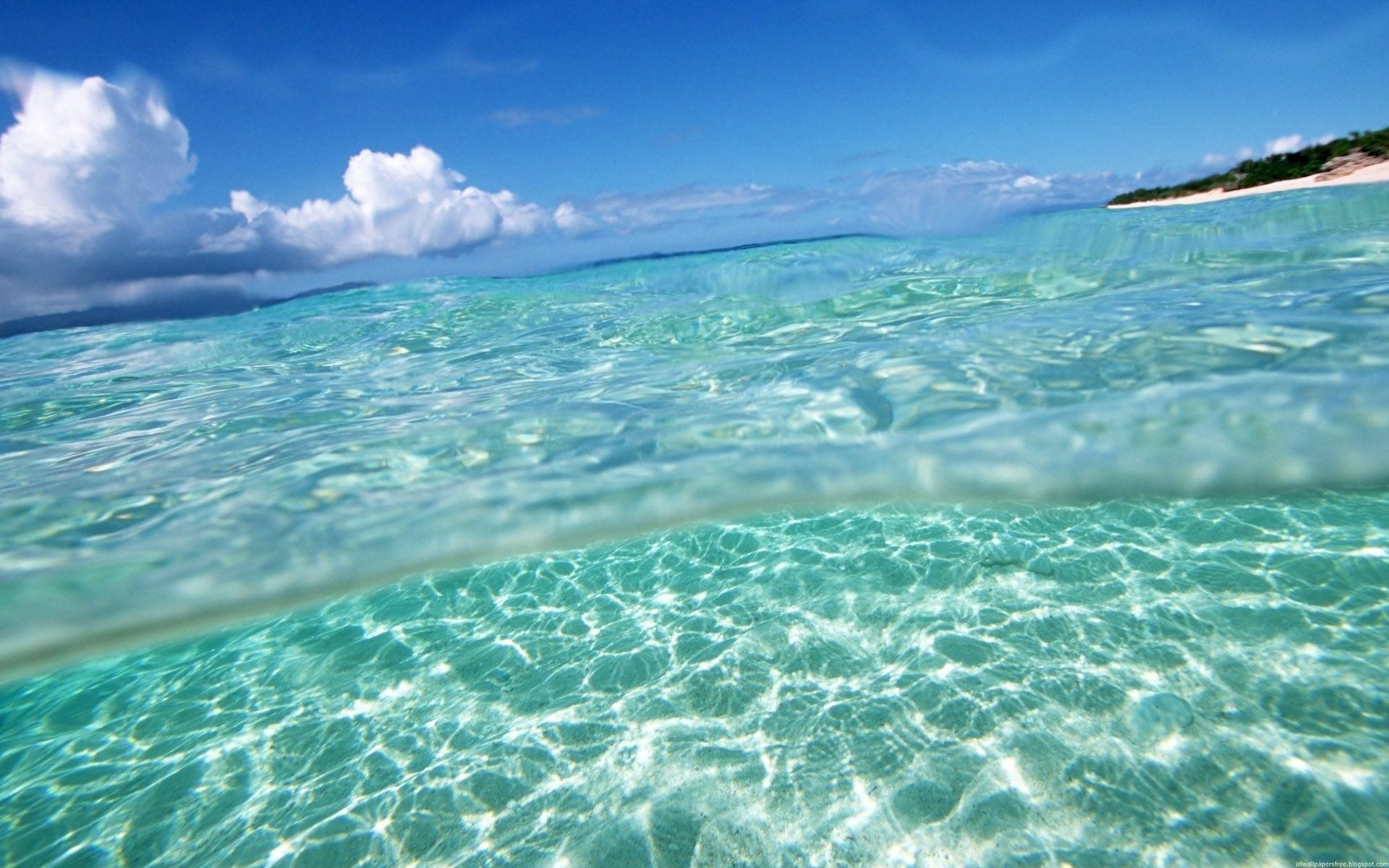 Фотографии пляж море природа ракушки побережье 2880x1800.