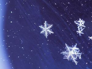 Обои Снежинки